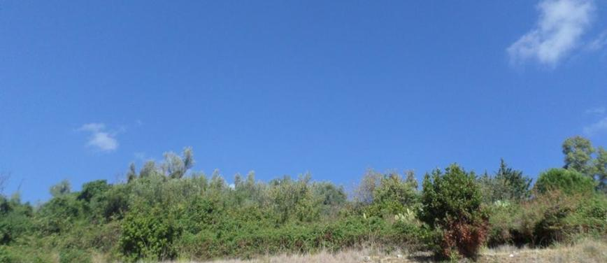 Terreno edificabile in Vendita a Monreale (Palermo) - Rif: 25160 - foto 2