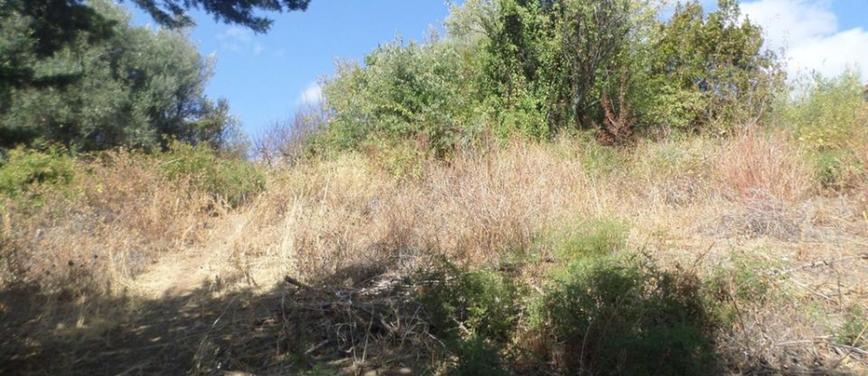 Terreno edificabile in Vendita a Monreale (Palermo) - Rif: 25160 - foto 4