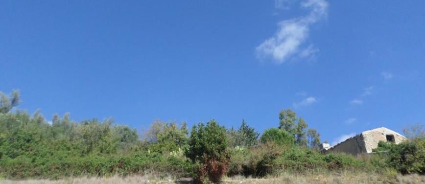 Terreno edificabile in Vendita a Monreale (Palermo) - Rif: 25160 - foto 8