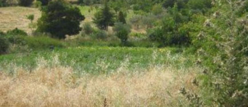 Rustico / Casale in Vendita a Milena (Caltanissetta) - Rif: 25499 - foto 3
