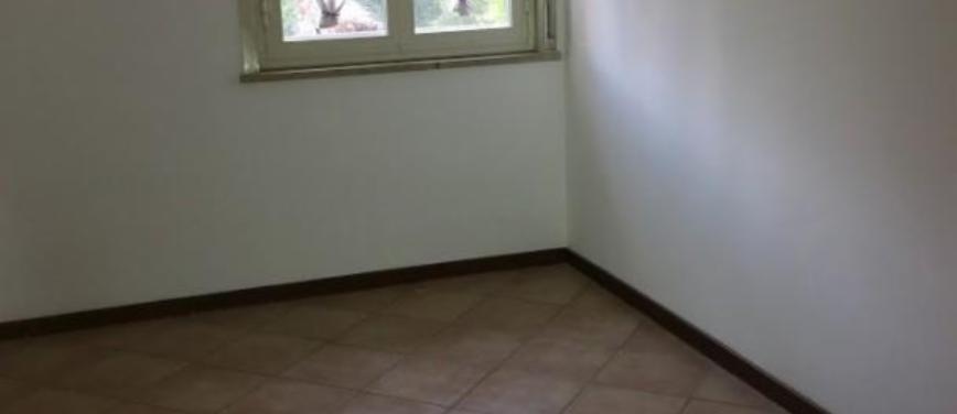 Appartamento in Vendita a Palermo (Palermo) - Rif: 25505 - foto 5