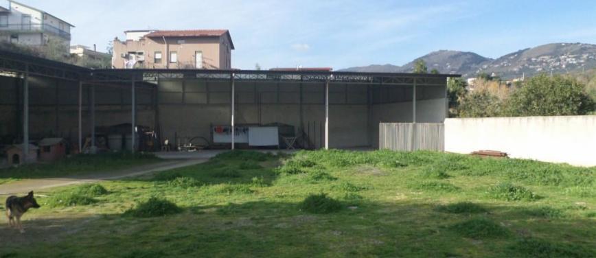 Terreno agricolo in Affitto a Palermo (Palermo) - Rif: 25531 - foto 4