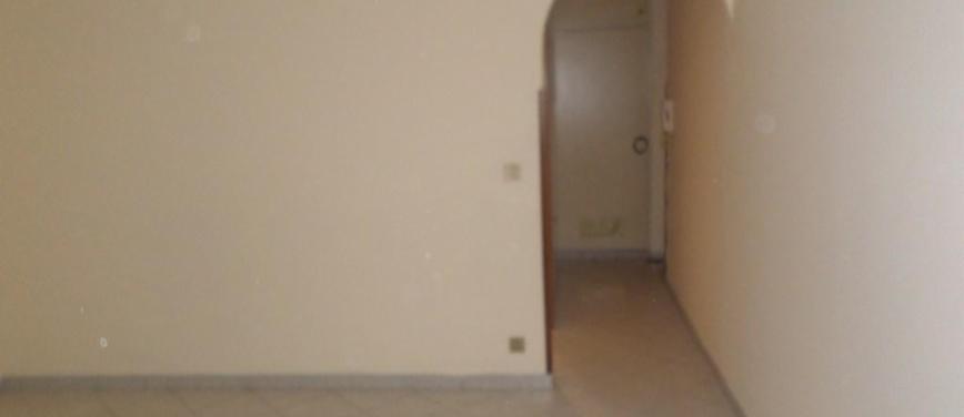 Appartamento in Affitto a Palermo (Palermo) - Rif: 25638 - foto 11