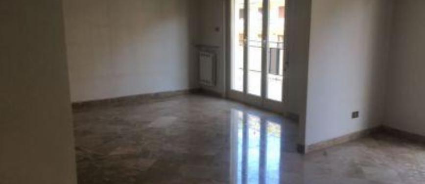 Appartamento in Affitto a Palermo (Palermo) - Rif: 25729 - foto 9