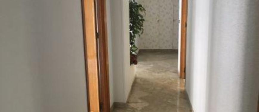 Appartamento in Affitto a Palermo (Palermo) - Rif: 25729 - foto 11