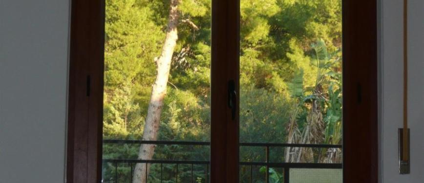 Appartamento in Affitto a Palermo (Palermo) - Rif: 25768 - foto 4