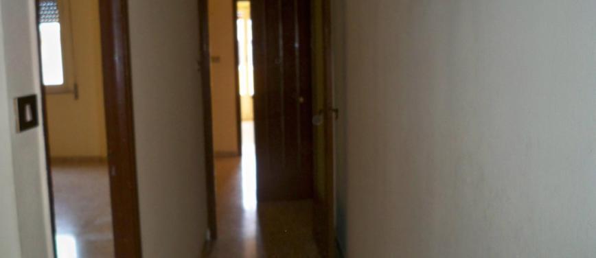 Appartamento in Affitto a Palermo (Palermo) - Rif: 25896 - foto 5