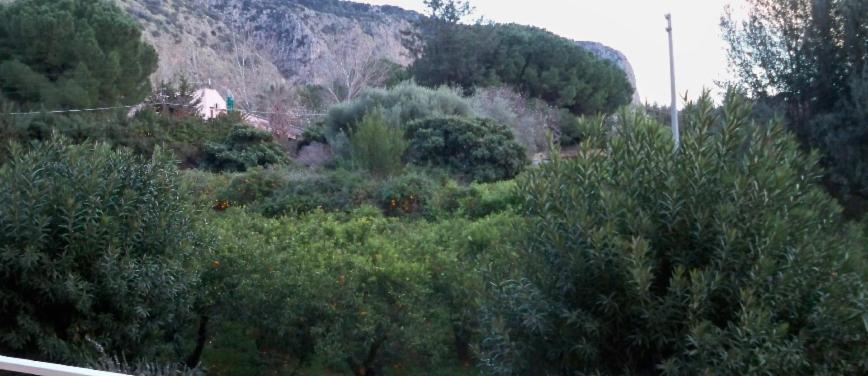 Appartamento in Affitto a Palermo (Palermo) - Rif: 26296 - foto 10