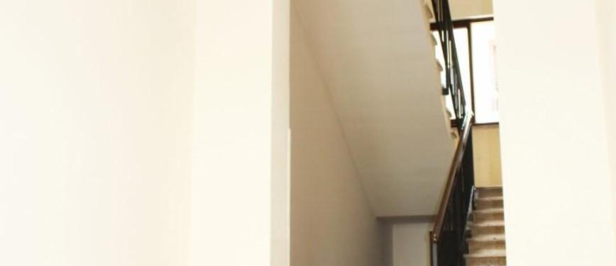 Appartamento in Affitto a Palermo (Palermo) - Rif: 26436 - foto 4