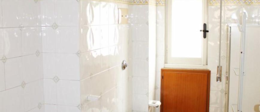 Appartamento in Affitto a Palermo (Palermo) - Rif: 26436 - foto 8