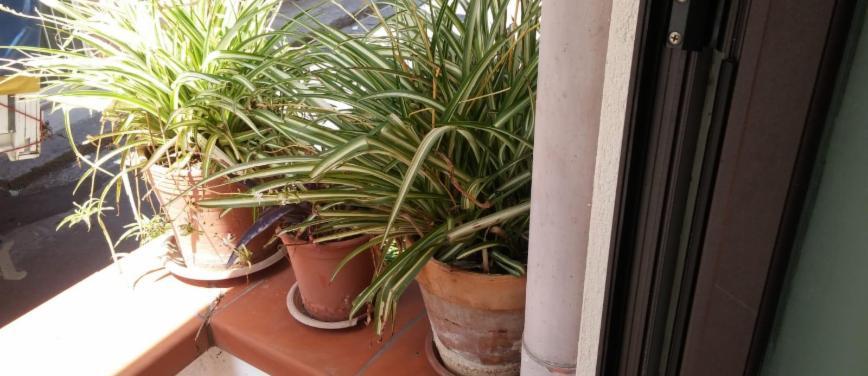 Casa indipendente in Affitto a Monreale (Palermo) - Rif: 26475 - foto 2