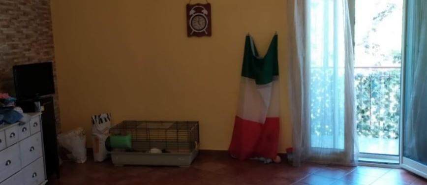 Appartamento in Affitto a Palermo (Palermo) - Rif: 26989 - foto 8
