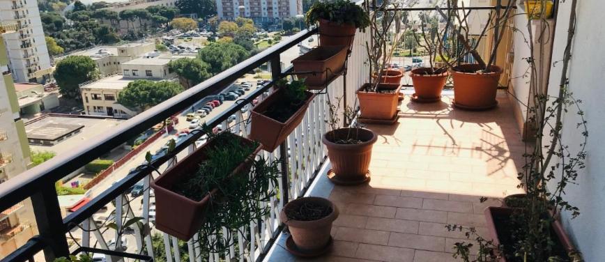 Appartamento in Vendita a Palermo (Palermo) - Rif: 26929 - foto 7