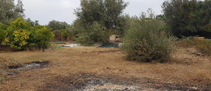 Terreno agricolo in Vendita a Carini (Palermo) - Rif: 27163 - foto 4