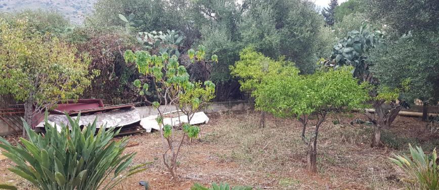 Terreno agricolo in Vendita a Carini (Palermo) - Rif: 27163 - foto 6
