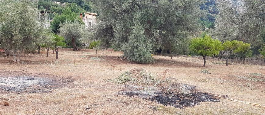 Terreno agricolo in Vendita a Carini (Palermo) - Rif: 27163 - foto 8