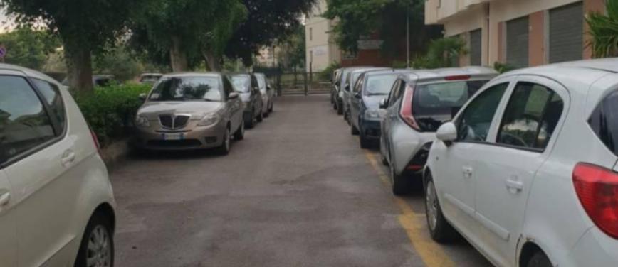 Appartamento in Affitto a Palermo (Palermo) - Rif: 27197 - foto 15