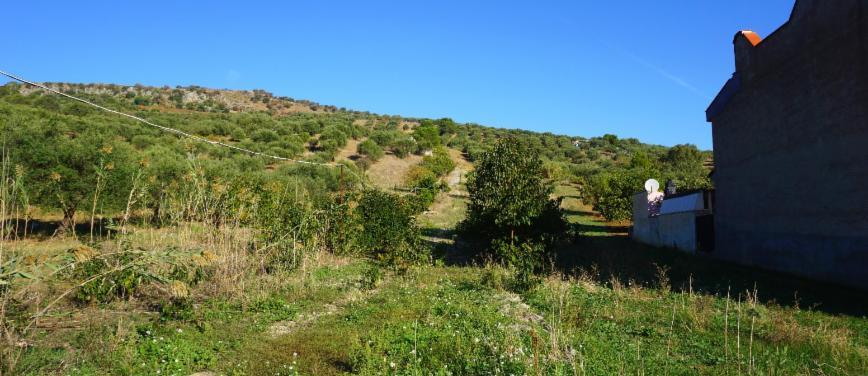 Terreno agricolo in Vendita a Bagheria (Palermo) - Rif: 27309 - foto 2