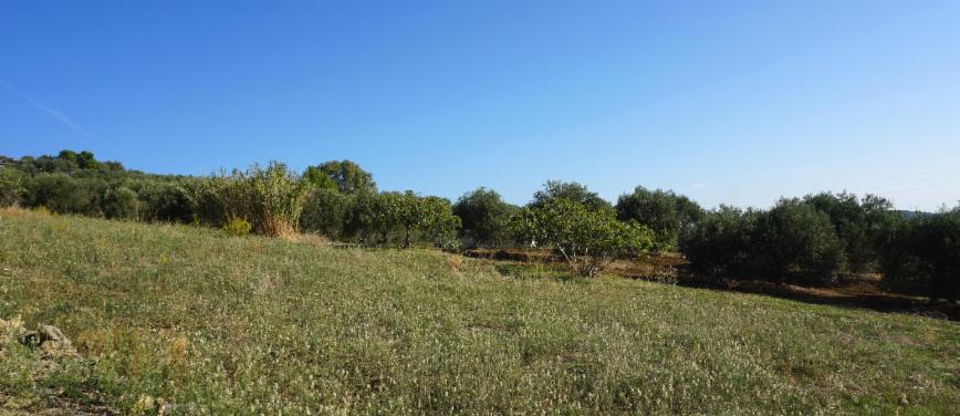 Terreno agricolo in Vendita a Bagheria (Palermo) - Rif: 27309 - foto 3