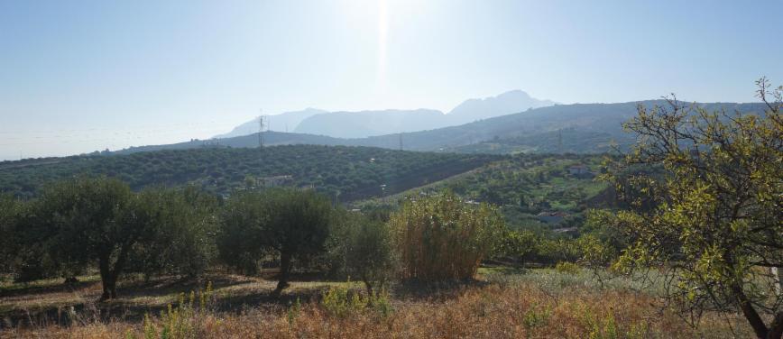 Terreno agricolo in Vendita a Bagheria (Palermo) - Rif: 27309 - foto 6