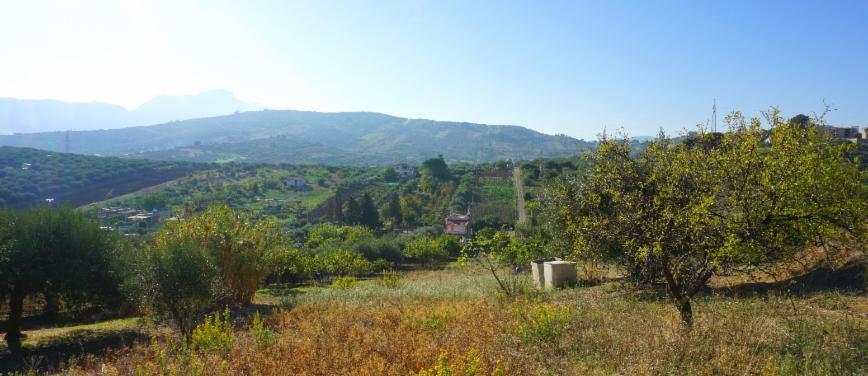Terreno agricolo in Vendita a Bagheria (Palermo) - Rif: 27309 - foto 8