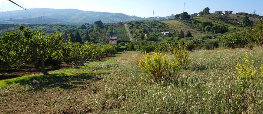 Terreno agricolo in Vendita a Bagheria (Palermo) - Rif: 27309 - foto 12