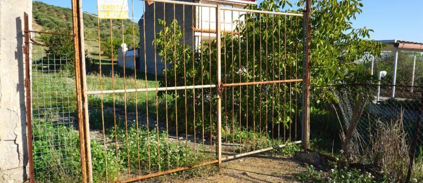 Terreno agricolo in Vendita a Bagheria (Palermo) - Rif: 27309 - foto 14