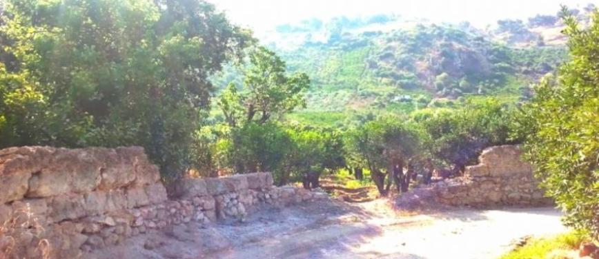 Terreno agricolo in Vendita a Palermo (Palermo) - Rif: 27310 - foto 1