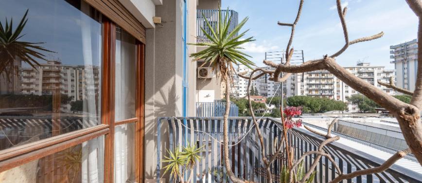 Appartamento in Vendita a Palermo (Palermo) - Rif: 27389 - foto 16