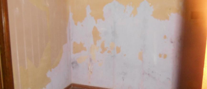 Appartamento in Vendita a Palermo (Palermo) - Rif: 27696 - foto 6