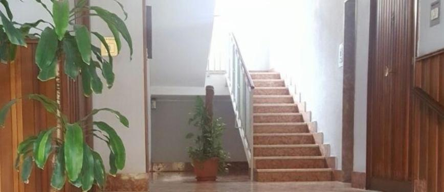 Appartamento in Affitto a Palermo (Palermo) - Rif: 27784 - foto 11