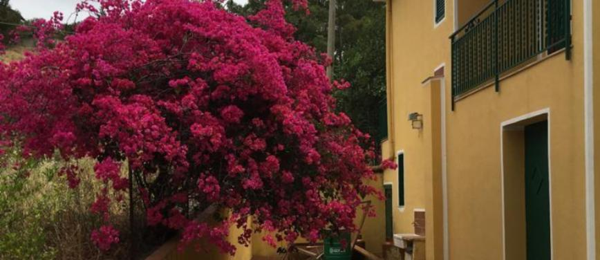 Villa in Vendita a Misilmeri (Palermo) - Rif: 27927 - foto 8